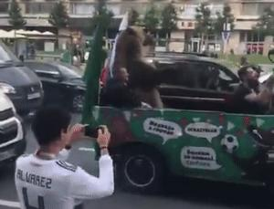 Gif avec les tags : Russie,ours,quenelle